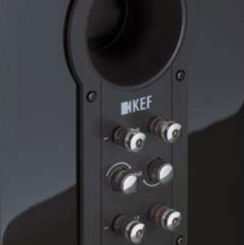 KEF R100 : double bornier et évent bass-reflex arrière.
